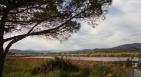 Réserve naturelle des Vieux Salins - nature reserve