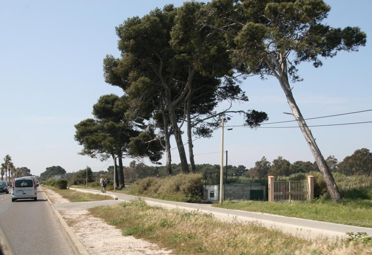 Les Marines du Levant, Hyères, Var : comment venir ?