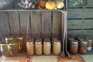 pors de miel de provence